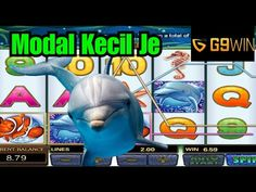 Dolphin Reef, Free Casino Slot Games, Cash Prize, Free Gift Cards, Sea World, How To Get Money, Dolphins, Common Dolphin, Seal