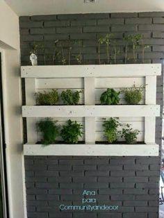 Beneficios de crear un huerto urbano con palets para casa
