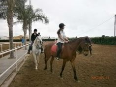 hourse riding and racing in spanish school in spain International house Valencia