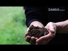 La Maison Autonome, économie, récupération et traitement de l'eau (PART2) - YouTube