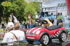 These baby racers staged a race for the record books on the Allgäu-Orient rally route.
