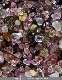 Sand grains under the microscopic sand photography art photo microscopy artwork Gary Greenberg Sand Under Microscope, Things Under A Microscope, Rocks And Gems, Rocks And Minerals, Crystals And Gemstones, Stones And Crystals, Plum Island, Grain Of Sand, Crystal Magic