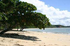 A beleza da Praia do Satu compensa o difícil acesso ao local. Para chegar à praia é preciso cruzar o Rio Caraíva de barco e caminhar pela orla por cerca de uma hora
