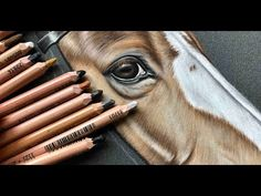 Time Lapse Pastel Drawing of Perlino Stallion Pony Drawing, Pastel Drawing, Pastel Art, Painting & Drawing, Colored Pencil Artwork, Color Pencil Art, Horse Drawings, Art Drawings, Horse Illustration