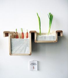 The Save Food from the Fridge project by Jihyun Ryou turns the concept of a fridge upside down and uses traditional and natural processes to preserve food.