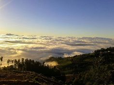 Reposting @discovernilgiris: It doesn't matter if it's raining and dark. The sun always shines above the clouds.  Photograph shot by Preetham Dambekodi  #Travel #TravelBlogger #DiscoverNilgiris #Nature #CloudPorn #Sunset #Clouds #Hills #Mountains #HillStation  #Nature #View #Scenery #TamilNadu #India #TeaGardens #Estates #TravelPhotography #NaturePhotography #Backpacker #Backpacking #Trek #Hiker