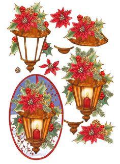 Fleurs de Noel: