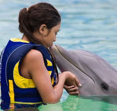 Where to watch and swim with dolphins in Hawaii | Hawaii Magazine