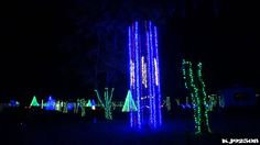 Jellystone Park Nashville Christmas Lights