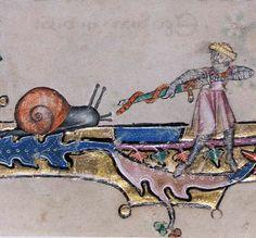 Snail and knight, Macclesfield Psalter, England ca. 1330-1340 (Cambridge, Fitzwilliam Museum, MS 1-2005, fol. 76r)