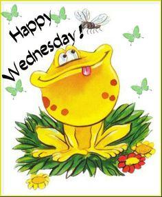 Happy Wednesday Frog