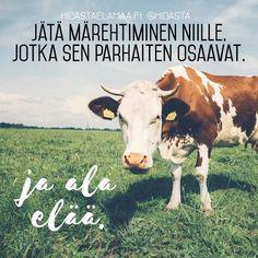 Lähetä kuvan myötä lempeät terveiset sille läheiselle, joka on taipuvainen märehtimään asioita 🙊💛   #murehtiminen #päästäirti #rentous #luottamus Inspirational Quotes, Positivity, Thoughts, Sayings, Animals, Cows, Instagram, Animais, Animales