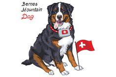 Bernese mountain dog by kavalenkava on Creative Market