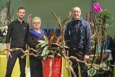 Experten für eine blumige Inszenierung von Zimmerpflanzen in aufregenden neuen Designs. Oliver Ferchland, Elisabeth Gramm und Manfred Hoffmann vom Fachverband Deutscher Floristen e.V./FDF.