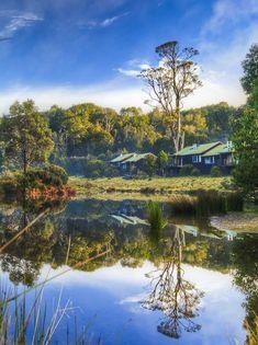 One of my favourite places in the world. Cradle Mountain Lodge in Tasmania, Australia Places Around The World, The Places Youll Go, Places To See, Around The Worlds, Tasmania Travel, Australia Travel, Visit Australia, Queensland Australia, Western Australia