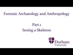 Forensic Archaeology and Anthropology - Part.1: Sexing a Skeleton (Final Edit) - YouTube