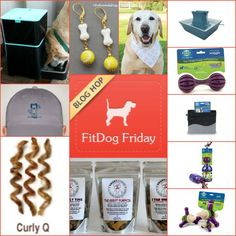 2015 FitDog Friday Prizes