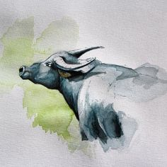 Second attempt at watercolour painting - a watercolour water buffalo. It's a very different animal from markers. VERY. #watercolor #wa...