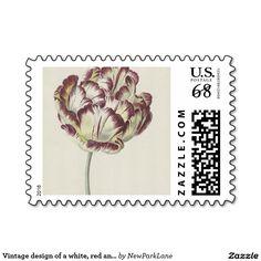 Vintage design of a white, red and yellow tulip, via: www.zazzle.com/newparklane*