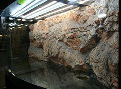 Afbeeldingsresultaat voor achterwand terrarium Rock Background, Reptile Room, Terrarium, Aquascaping, Pets, Artwork, Google, Europe, Aquariums