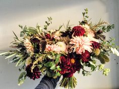 Autumn bridal bouquet featuring blush and oxblood dahlias.  Grown and designed by Love 'n Fresh Flowers.
