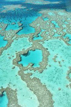 The Great Barrier Reef: The Great Barrier Reef, Whitsunday Islands, Queensland, Australia