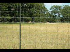 Bekaert Hinge Joint Fence Installation.flv - YouTube