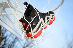Adidas Crazy 8 Damian Lillard PE (G98289) wlasnie do nas przyjechały! Wkrótce dostępne online! Just arrived! Available online soon! #adidas #crazy8 #damianlillard #portland #blazers #sneakers #buty #kicks #sklepkoszykarza #sneakernews #sneakerfiles #soleonfire #solecolletor #shoesforsale