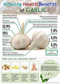 Garlic has been used as a medicine throughout ancient and modern history to prevent and treat a wide range of conditions and diseases.