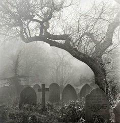 death tree Black and White dark dead cross goth gothic cemetery disturbing graveyard gravestone Dark Side, Old Cemeteries, Graveyards, Cemetery Art, Cemetery Statues, Haunted Places, Belle Photo, Dark Art, Mists