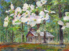 Dogwood Trees, Dogwood Flowers, Framed Prints, Canvas Prints, Southwest Art, Instagram Images, My Arts, Vibrant, Bloom