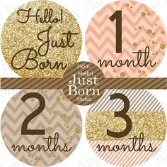 Gold Peach Baby Month Stickers FREE Baby Monthly Sticker Baby Month Milestone…