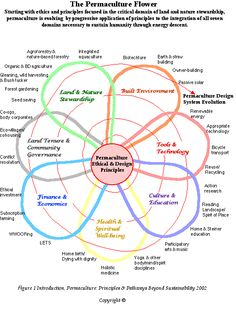 "Permaculture is designing human settlements and agricultural systems that mimic the relationships found in nature. Permaculture is sustainable land use design. This is based on ecological and biological principles, on patterns that occur in nature to maximize effect and minimize work. Elements in a system are viewed in relationship to other elements, where the outputs of one element become the inputs of another, creating the conceptual phrase ""waste = food""."
