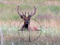 Don't Forget to Breathe - Four Breathing Methods for Shooters