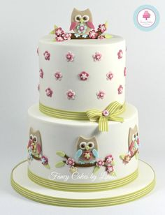 Owl Themed Celebration Cake - Cake by Fancy Cakes by Linda