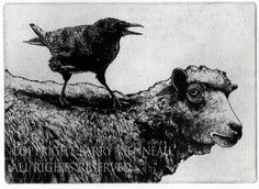 """"""" THE CROW AND THE SHEEP .""""  Aesop's Fable, Intaglio Etching on Paper, 5 inch by 7 inch 2014. by Larry Vienneau Raven artwork  Raven crow  black bird Sheep Ram  by RAVENSTAMPS"""