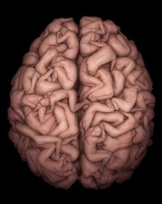 Human brain outta people.. This is NEAT!!!! <3