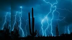 lightening storm over the desert | 40 Live Wallpapers In 4K Full HD For Free Download