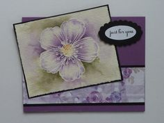 TLC494 Eggplant Blossom by Mrs Noofy - Cards and Paper Crafts at Splitcoaststampers