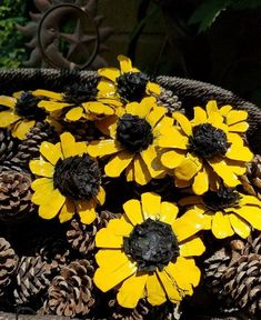 Painted Pinecone daisy Flowers Zinnia Flowers Zinnia Pinecones Yellow daisy SET OF THREE zinnia pine cone wedding decor Pine Cone Art, Pine Cone Crafts, Pine Cones, Nature Crafts, Fall Crafts, Summer Crafts, Kid Crafts, Craft Projects, Paper Crafts