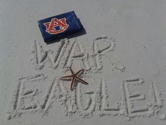 War Eagle     For Great Sports Stories and Audio Podcasts, Visit our Blog at www.RollTideWarEagle.com