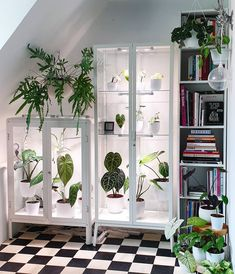 Beautiful Indoor Plant Display Ideas To Decorate Your Living Room Fabrikor Ikea, Ikea Glass Cabinet, Ikea Plants, Indoor Greenhouse, Greenhouse Ideas, Decoration Plante, Ikea Cabinets, Display Cabinets, House Plants