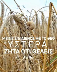 """xaoa/''Άν μείνετε ενωμένοι  μαζί μου και τα λόγια μου μένουν ζωντανά μέσα σας ότι  θελήσετε ζητήστε το και θα σας δωθεί."""".KATA  IΩΑΝΝΗ 15:7"""