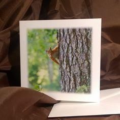 Kurkistus, original colors, postcard