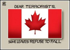 Some 'leaves' Refuse toFall. Who are ThePeoples Actually Terrorised By? Canadian Things, I Am Canadian, Canadian Girls, Canada 150, Visit Canada, Cool Countries, Countries Of The World, Meanwhile In Canada, True North