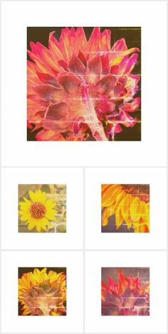 Sunflower Wooden Wall Art Series