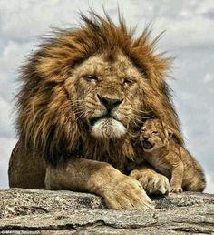 son & dad