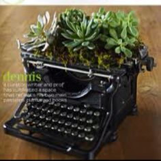 """Turn old treasures into new planters... (Great excuse not to do any writing - """"there's a plant growing in my typewriter!"""")"""