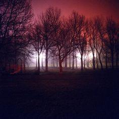 """Résultat de recherche d'images pour """"Night Landscapes par Amanda Friedman"""""""