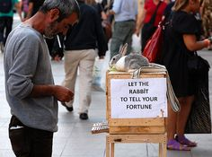 Interesting fortune teller, Istanbul, Turkey by Dave Rutherford